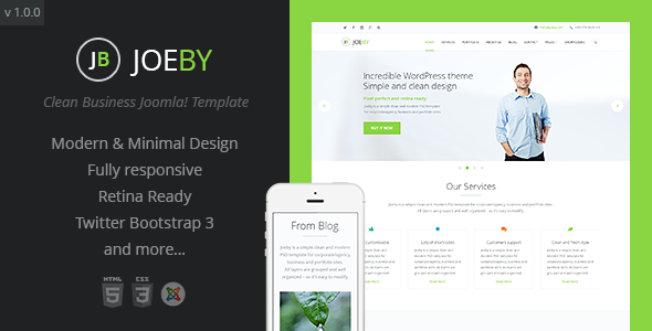 ThemeForest Joeby Clean Business Joomla Template 10575035