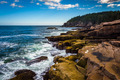 Otter Cliffs and the Atlantic Ocean in Acadia National Park, Mai
