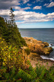 View of cliffs and the Atlantic Ocean in Acadia National Park, M