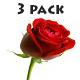 Elegant Logo Pack