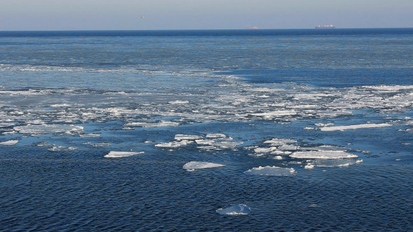 Ice Floes Drifting in Winter Sea