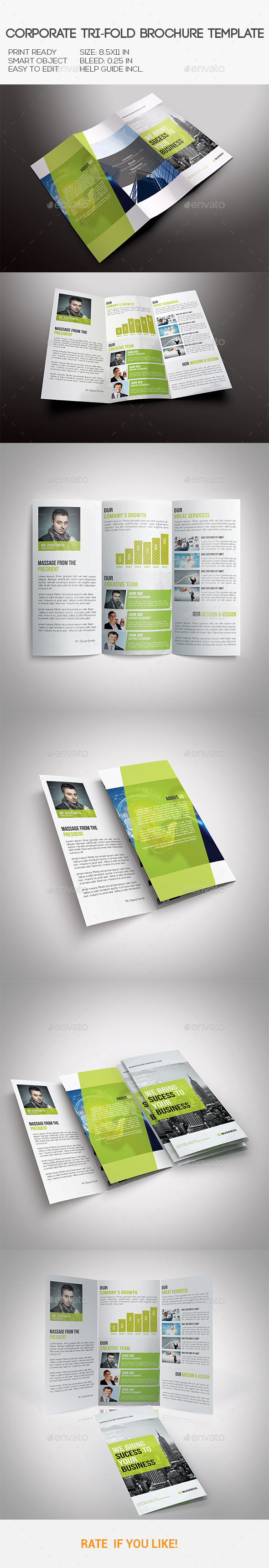 GraphicRiver Corporate Tri-Fold Brochure 10576905
