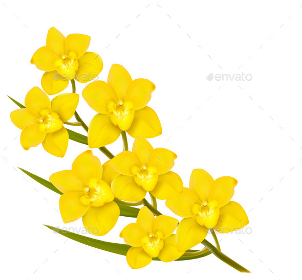 GraphicRiver Holiday Yellow Flowers Background 10579150