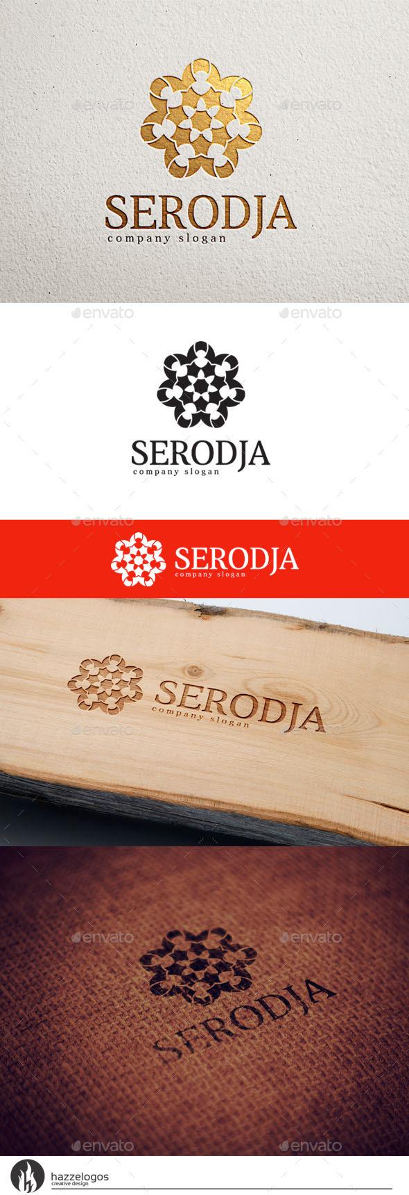 GraphicRiver Serodja Logo 10579671