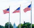 Washington Monument flags and Capitol DC USA - PhotoDune Item for Sale