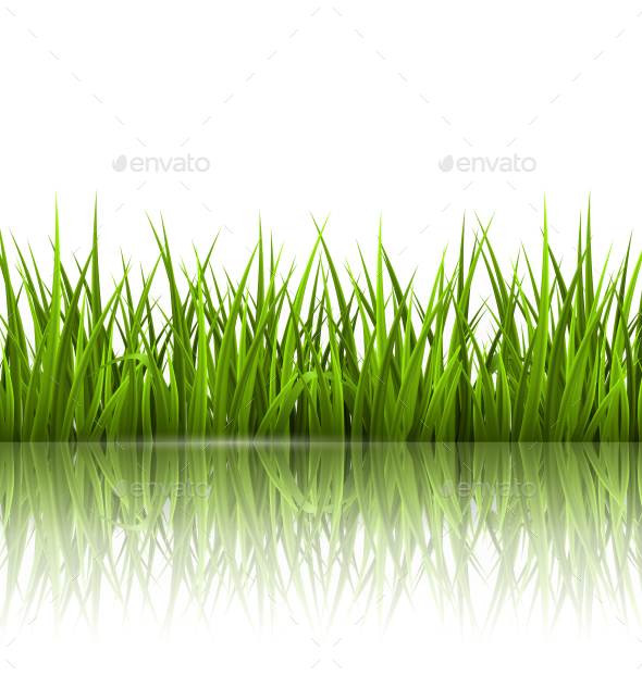 GraphicRiver Green Grass Lawn with Reflection on White 10582306