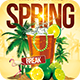 Spring Break Party  | Festival Collection  - GraphicRiver Item for Sale