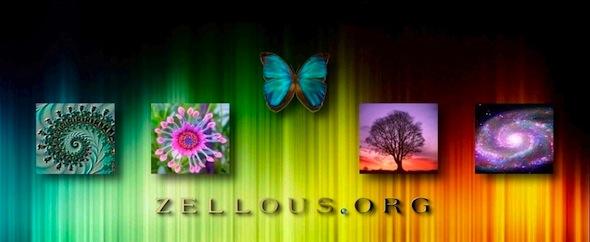 Zellous banner