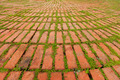 Brick Pavers Outlined by Green Plants Growing Between - PhotoDune Item for Sale
