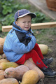 little boy sitting on a big pile of pumpkins - PhotoDune Item for Sale