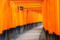 Fushimi Inari Temple in Kyoto, Japan - PhotoDune Item for Sale