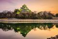 Okayama Castle in Japan - PhotoDune Item for Sale