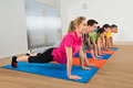 Group Of People Doing Push Ups - PhotoDune Item for Sale