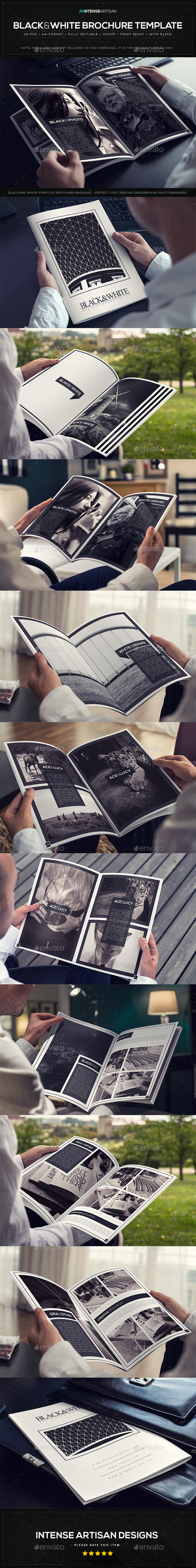 GraphicRiver Black & White Brochure Template V.1 10600054
