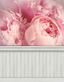 Spring wall background/backdrop - PhotoDune Item for Sale
