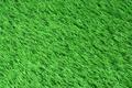 Artificial grass - PhotoDune Item for Sale