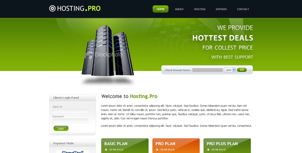 Hosting Provider  - Hosting Technology