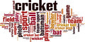 Cricket Word Cloud Concept - PhotoDune Item for Sale