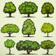 Set of Trees - GraphicRiver Item for Sale