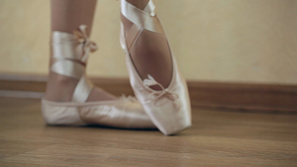 VideoHive Women Ballet Shoes 05 10609104