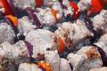 Meat kebab on skewers while cooking. - PhotoDune Item for Sale
