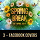 3 - Spring & Summer FB Covers - GraphicRiver Item for Sale