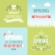 Spring Designs  - GraphicRiver Item for Sale