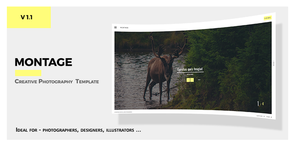 ThemeForest Montage Photography Responsive Template 10623601