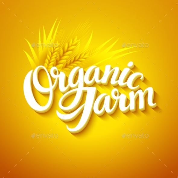 GraphicRiver Organic Farm Logo 10629364