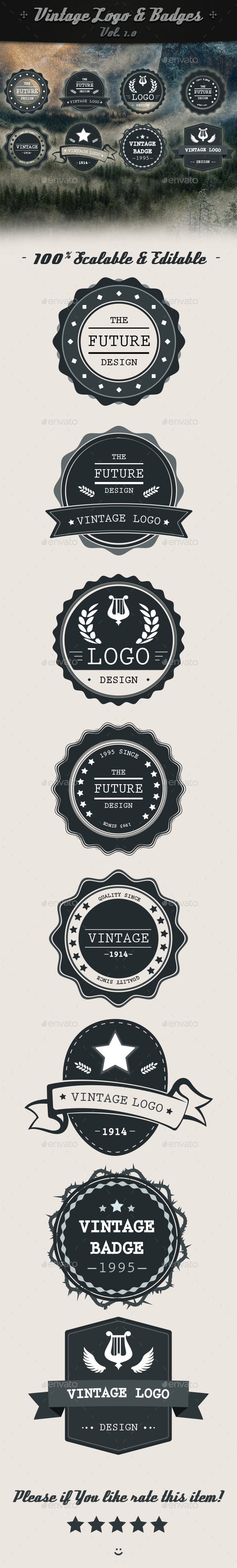 GraphicRiver Vintage Logo & Badges V.1.0 10638755