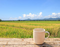 White Coffee cup on wooden table with green paddy rice backgroun - PhotoDune Item for Sale