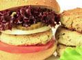 Vegan sea burger closeup background - PhotoDune Item for Sale