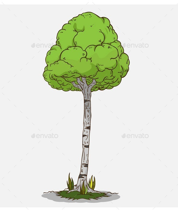 GraphicRiver Isolated Tree 10643221