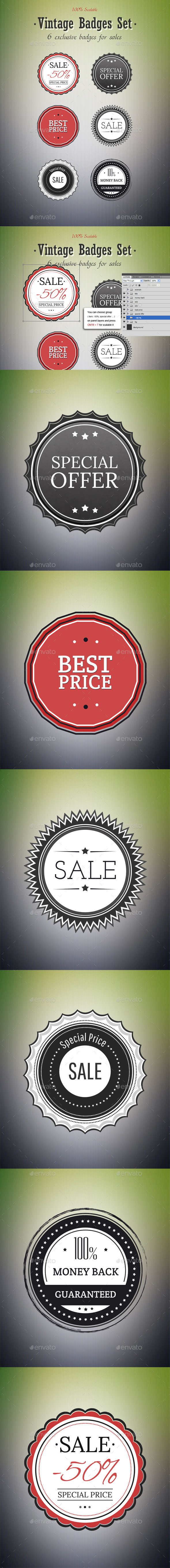 GraphicRiver 6 Exclusive Badges for Sale 100% Scalable 10644462