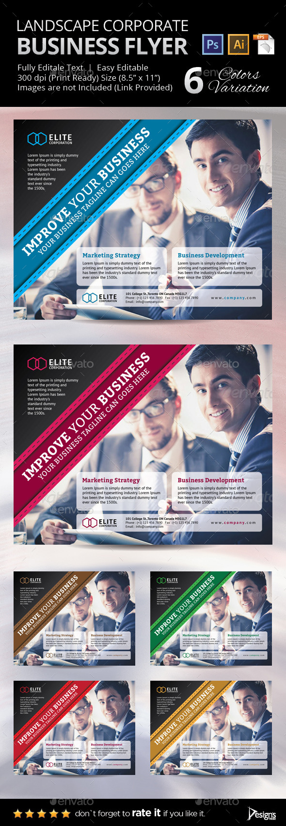 GraphicRiver Multipurpose Business Flyer 35 10646132