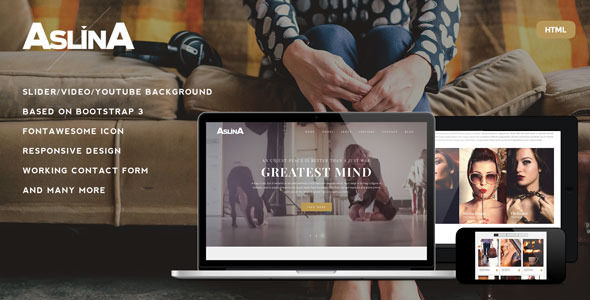 ThemeForest Aslina Responsive One Page Portfolio Template 10595715