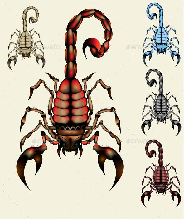 GraphicRiver Scorpion 10653425