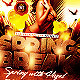 Beach Party/Spring Break Flyer Template - GraphicRiver Item for Sale