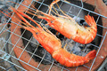 Shrimp on the grill - PhotoDune Item for Sale