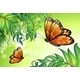 Butterflies and Plants  - GraphicRiver Item for Sale
