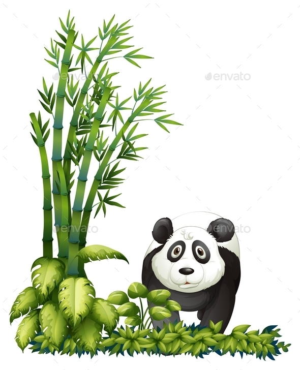 GraphicRiver A Panda 10654871