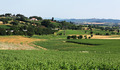 Italian landscape in Tuscany - PhotoDune Item for Sale