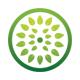 Leaf Circle - GraphicRiver Item for Sale