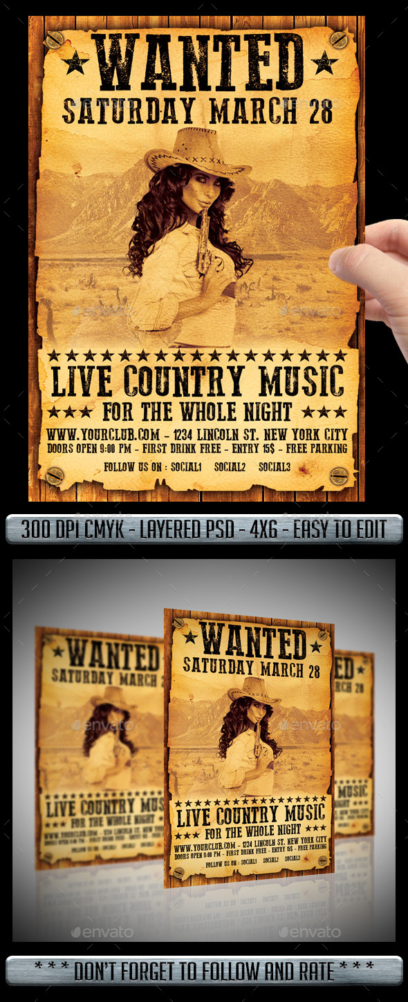 GraphicRiver Country Flyer 10663362