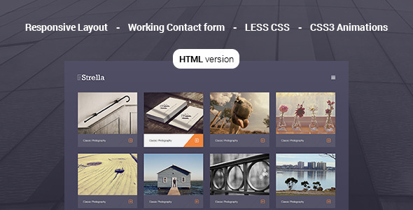 ThemeForest Strella Photography Template 10535951