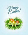 Happy Easter background. Colorful easter eggs on green grass.  - PhotoDune Item for Sale
