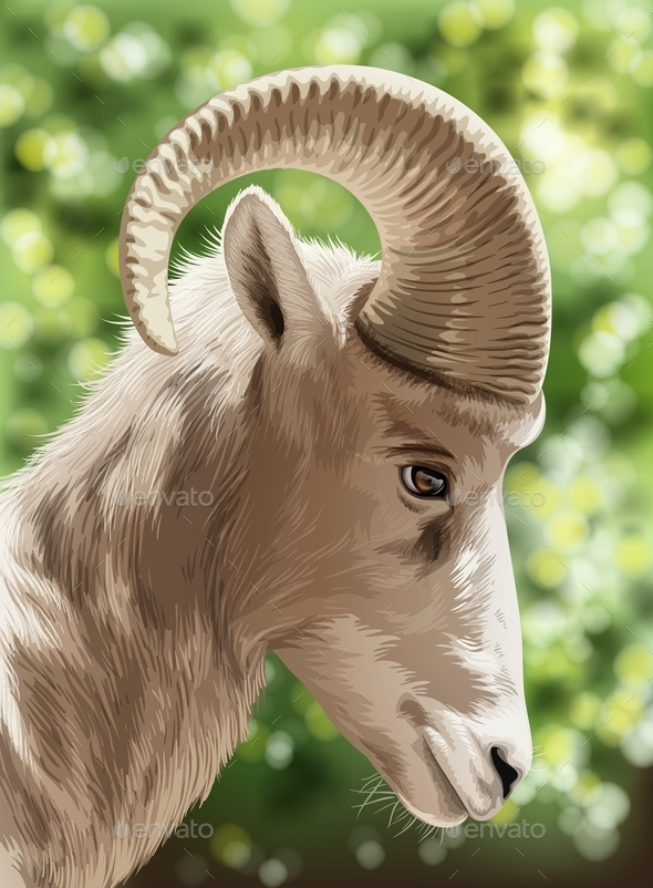 GraphicRiver Wild Goat 10671138