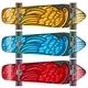 Colourful Boards