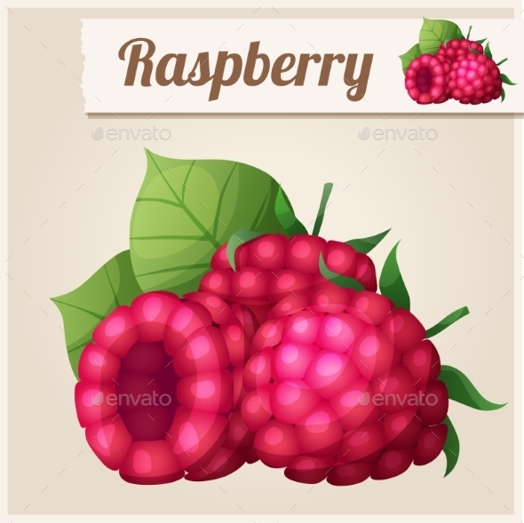 GraphicRiver Detailed Icon Raspberry 10678344