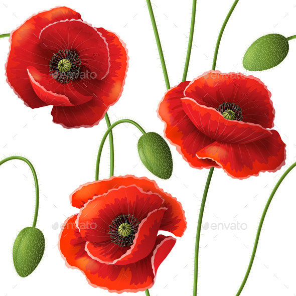 GraphicRiver Poppy Pattern 10678698